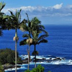hawaii_vista1