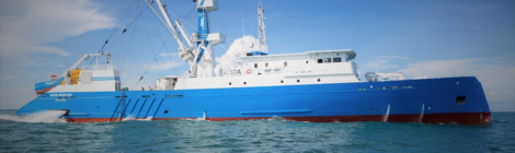 World Bank Tuna Plan Blindly Focuses On The Catch Forgets The Habitat