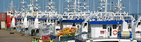Mozambique Tuna Pasture Collapse Sinks Fleet And Country in $850 Million Debt